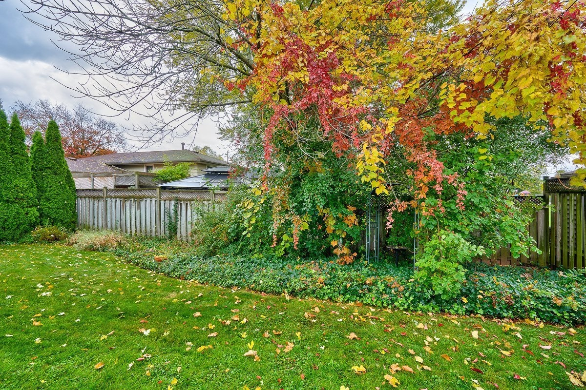 3416-rexway-drive-burlington-ontario-l7n-2l3_backyard-4